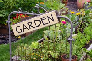 Two raised garden beds filled with flowers and vegetables are nestled in small backyard. A delightful rustic sign hanging jauntily on a recycled gate adds an artistic accent.